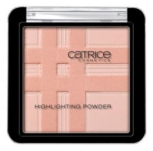 Check & Tweed Highlighting Powder C01
