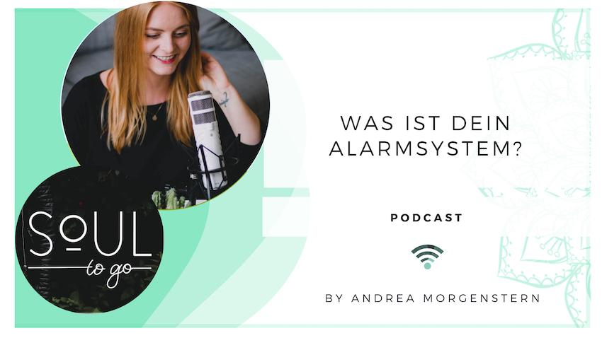 Was ist dein Alarmsystem?